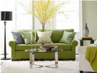 Зеленая гостиная — 75 фото идей сочетания зеленой гостиной