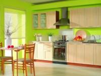 Кухня зеленого цвета: идеи, советы, фото дизайна