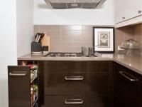 Цвет венге в интерьере кухни: обзор популярных расцветок и дизайна (60 фото)