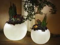 Подсветка для комнатных цветов — как организовать правильный свет? 80 фото свежих решений!