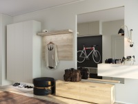 Идеи дизайна шкафов для прихожей с фото