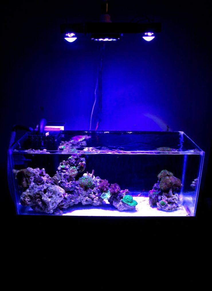 Как своими руками сделать свет в аквариуме своими руками 66